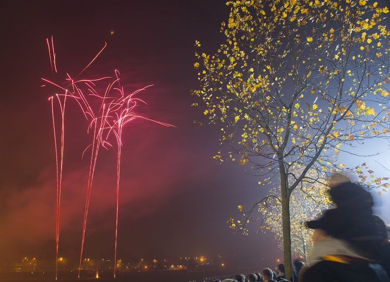 Bonfire Night | Visit Nottinghamshire