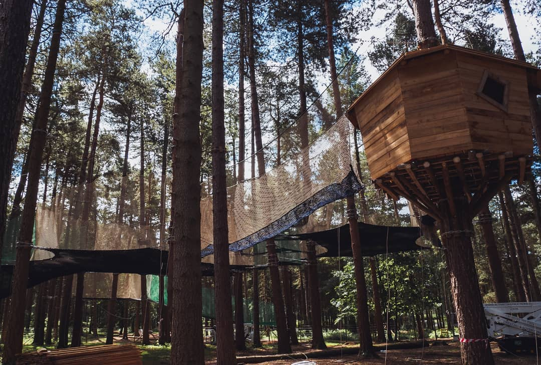 Nets kingdom Go Ape | Visit Notts