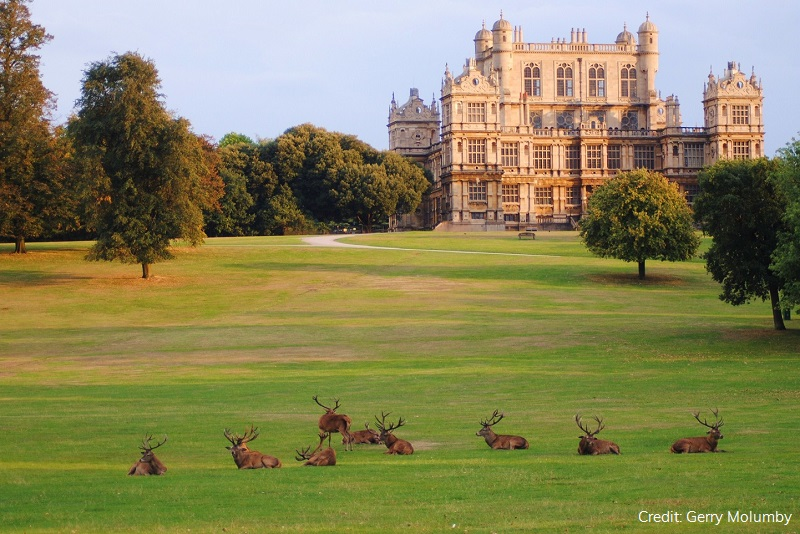 Wollaton Hall by Gerry Molumby | Visit Nottinghamshire