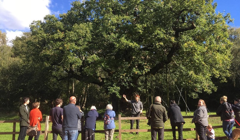 Story of Shwerwood Guided Walks - visit Notinghamshire