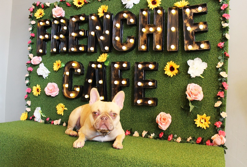 Frenchie Cafe | Visit Nottinghamshire