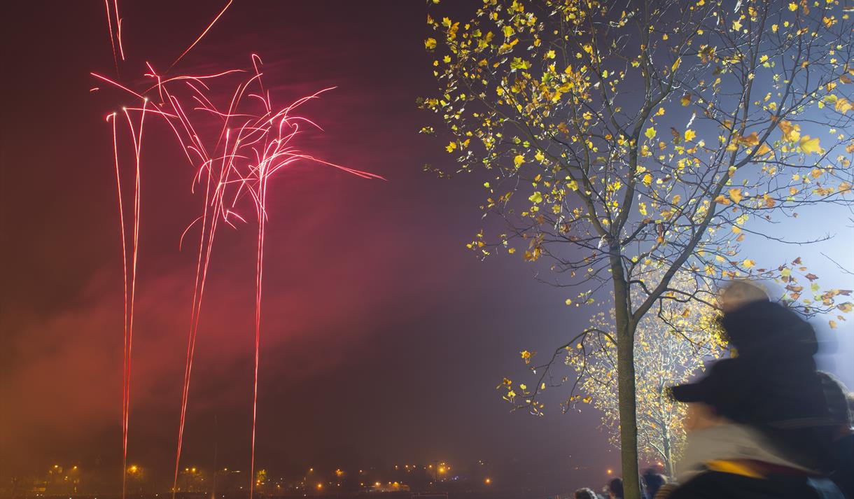 Bonfire Night on The Forest 2019 - Visit Nottinghamshire