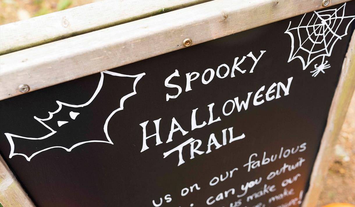 Halloween Family Potion Trail - Sold Out