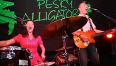 Pesky Alligators Performing Live at The Ram