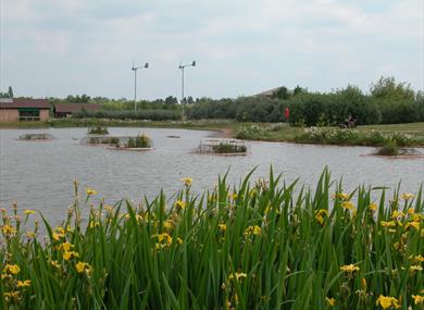 The lake at Rushcliffe Country Park