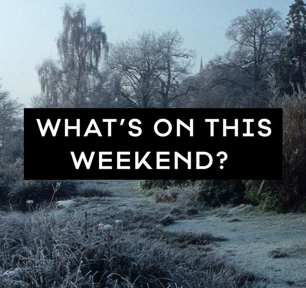 What's on This Weekend in Nottinghamshire: 21 - 23 December 2018