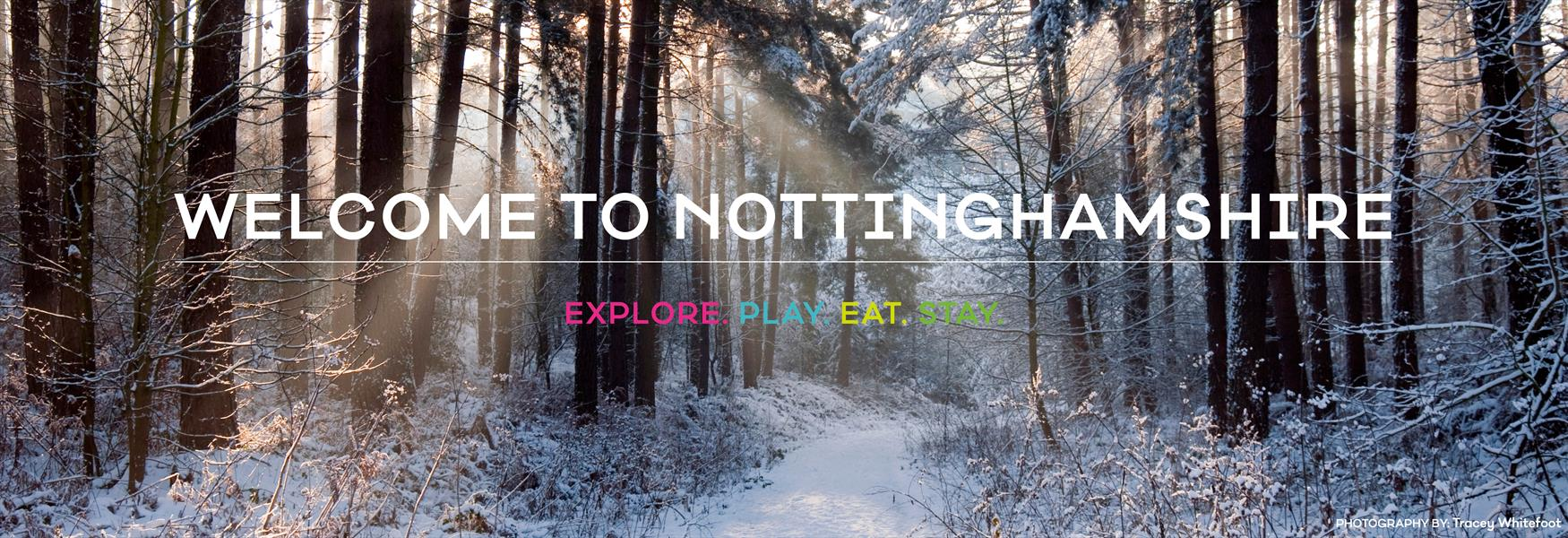 Snowy Sherwood Forest by Tracey Whitefoot Visit Nottinghamshire