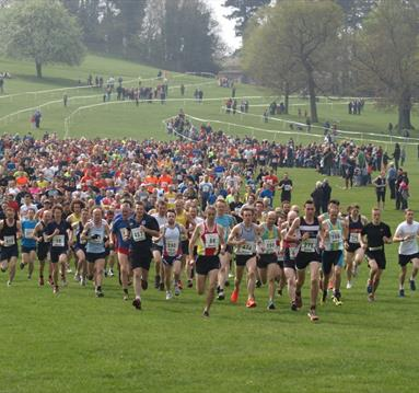 Notts Easter 10km & Fun Run
