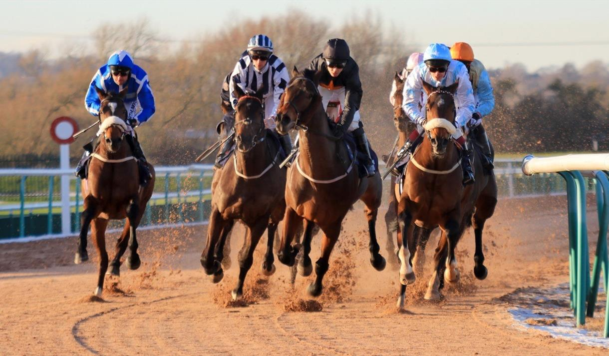 Free Raceday at Southwell Racecourse
