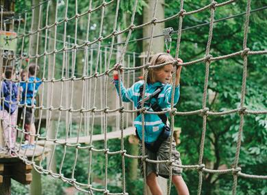 Go Ape at Sherwood Pines