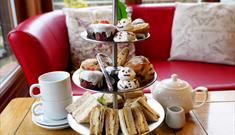 Christmas Afternoon Tea at The Tropical Butterfly House!