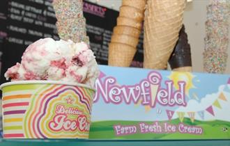 Newfield Dairy Ice Cream Parlour and Cafe