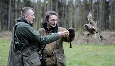 Sherwood Forest walks: Woodland Photography Walks with Birds Of Prey