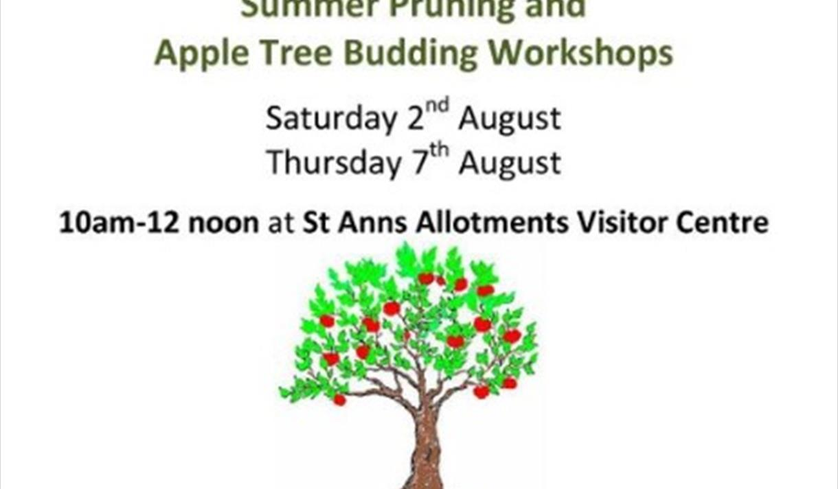 Summer Pruning and Apple Tree Budding Workshops