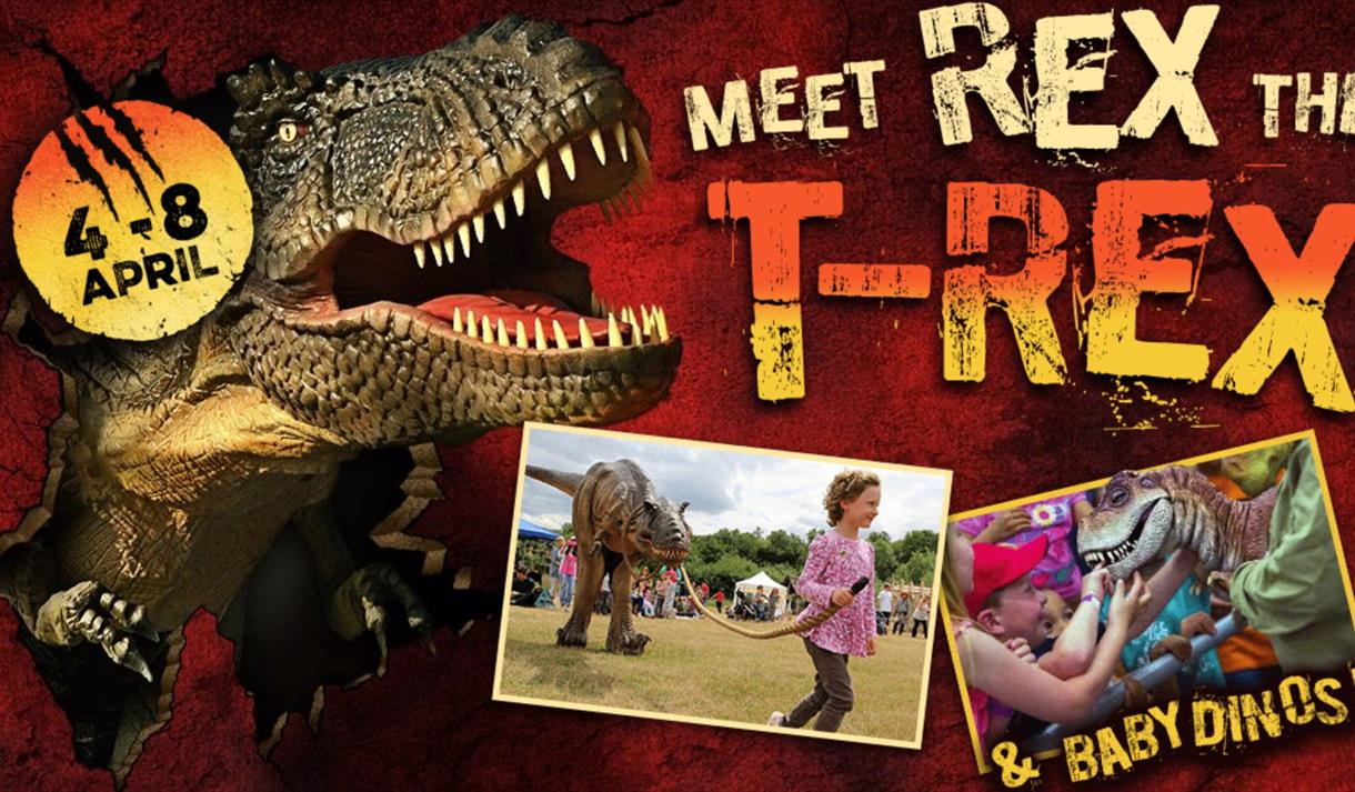 Rex the T-Rex and Baby Dinos at Wheelgate Park