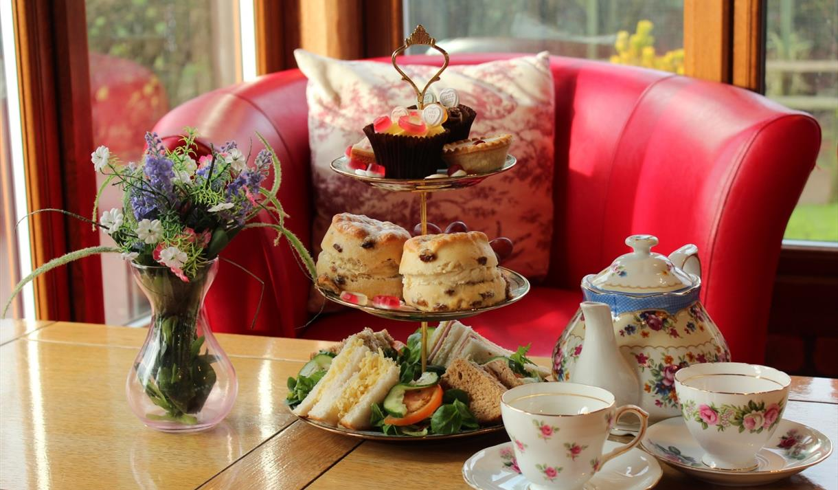 Valentine's Afternoon Tea at The Tropical Butterfly House