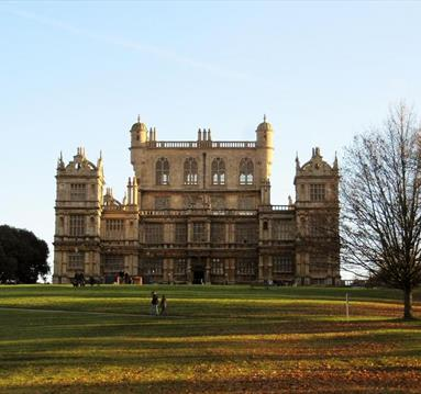 Wollaton at Christmas