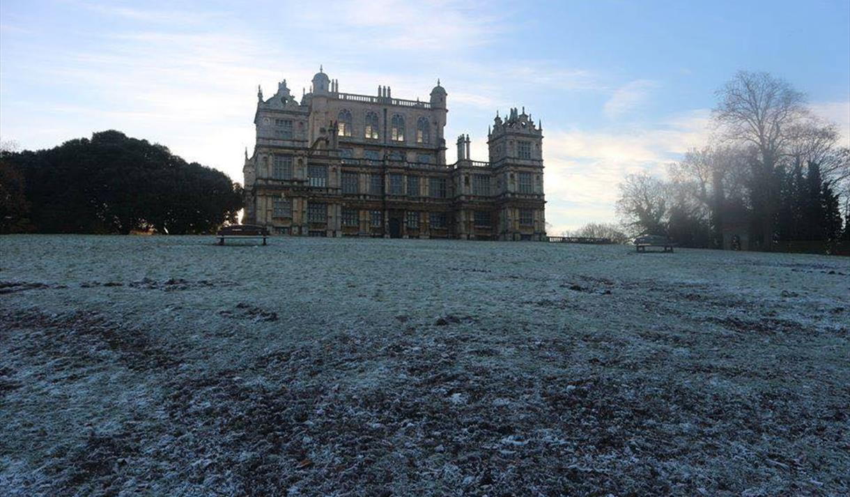 Santa Paws at Wollaton Hall | Visit Nottinghamshire