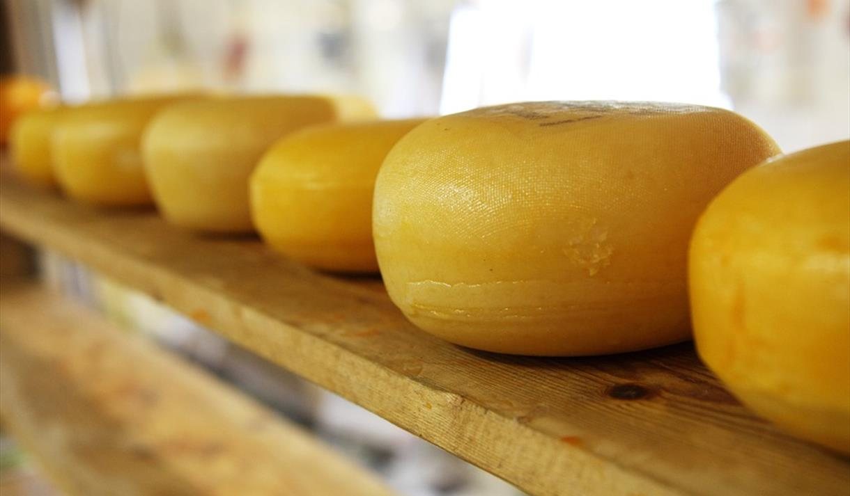 Introduction to Cheesemaking: 2 Day Course