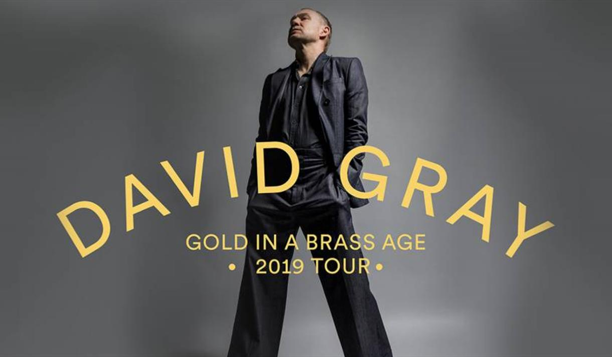 David Gray: Gold In A Brass Age