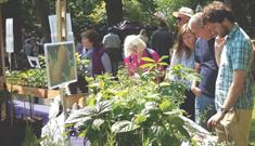 Specialist Plant Fair at Archbishop's Palace