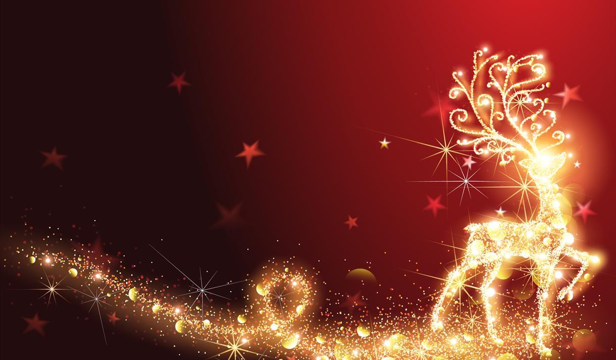 Sauganash Christmas Light 2020 Sauganash Christmas Lights Directions From One Place | Byqtta